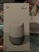 Google Home and Google Home Mini in Spring, Texas