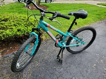 Nishiki Youth Pueblo 24'' Mountain Bike in Bolingbrook, Illinois