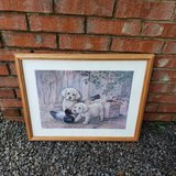 Dog Portrait in Fort Campbell, Kentucky