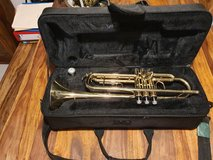 Mendini by Cecilio Gold Trumpet Brass, student trainer in Wiesbaden, GE