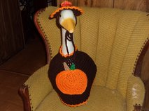 Pumpkin Halloween Geese Goose Outfit in St. Louis, Missouri