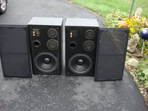 ACOUSTIC LAB PRO SERIES 600 SPEAKER CABINETS in Naperville, Illinois