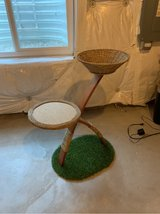 Cat scratcher in Naperville, Illinois