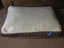 Dog Bed in Chicago, Illinois