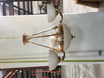 24k gold plated chandelier in Spring, Texas