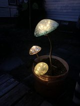 solar lights mushrooms in Norfolk, Virginia