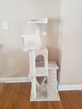 Cat Tree in Fort Knox, Kentucky