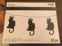 Lighted Cat Banner Kit in Naperville, Illinois