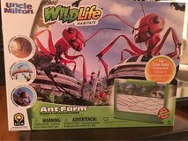 Uncle Milton's Ant Farm in St. Charles, Illinois