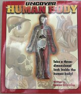 Uncover the Human Body in Okinawa, Japan