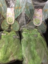 disneystore tinkerbell dress and wings in Okinawa, Japan