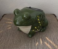 Solar frog light in The Woodlands, Texas