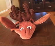 Pet Reindeer Hat in Naperville, Illinois