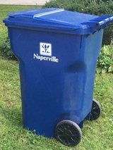 Large Recycle Bin in Naperville, Illinois