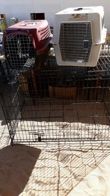 ANIMAL CRATES in 29 Palms, California