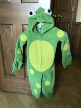 Frog costume in Westmont, Illinois