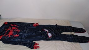 Spider-Man Into the Spider-Verse costume in The Woodlands, Texas