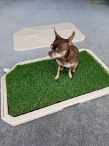 Piddle Place Dog Restroom Mat in Okinawa, Japan