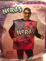 nerds costume in Okinawa, Japan