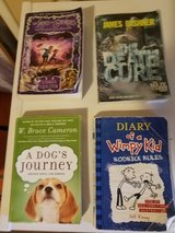 Many different titles (young adult or youth books) in 29 Palms, California