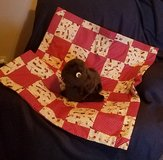 Baby Quilt - Homemade - New in Alamogordo, New Mexico
