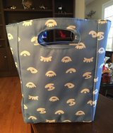 Insulated Lunch Bag in Batavia, Illinois