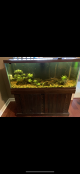 75 gallon fresh water aquarium in Moody AFB, Georgia