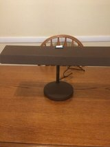 ELECTRIX  Goose neck desk light! in Plainfield, Illinois