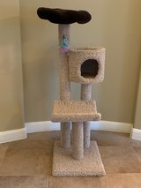 4-level cat tree in Kingwood, Texas