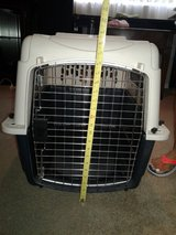 Dog Carrier in Nellis AFB, Nevada