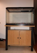 30 Gallon Fish tank with table and accessories (Reduced!) in Camp Lejeune, North Carolina