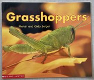 Scholastic Grasshoppers in Okinawa, Japan