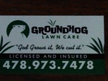Lawn Care in Byron, Georgia