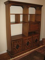 ENTERTAINMENT CENTER - ROOM DIVIDER in Chicago, Illinois