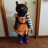 Halloween Cat in Alamogordo, New Mexico