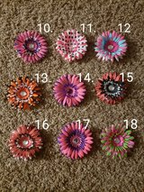Flower Clips #2 in Bolingbrook, Illinois
