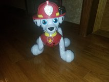 Paw patrol in Fort Campbell, Kentucky