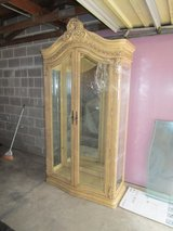 Large Glass Cabinet in Naperville, Illinois