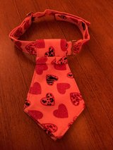 Necktie for a small dog in Okinawa, Japan