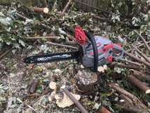 Chainsaw in Joliet, Illinois