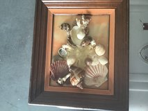 Shell picture. Shells ape by Peggy, made in Hampton in 60's or 70's in Hampton, Virginia