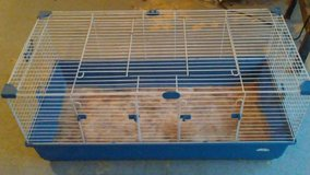 Guinea Pig Cage and Supplies in Baytown, Texas