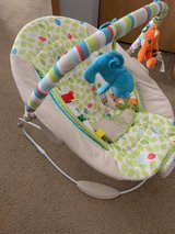 BOUNCY SEAT in Sandwich, Illinois