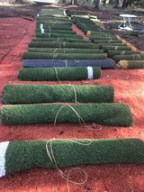 Wild Ferns $20 each professional grade NFL style Artificial grass at $2 a square foot in Tacoma, Washington