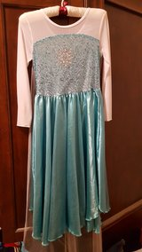 Elsa Frozen dress with sheer sparkle attached cape in Chicago, Illinois
