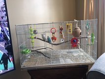 Just in time for Christmas...Two Beautiful Parakeets...male and female with large cage and toys in Quantico, Virginia