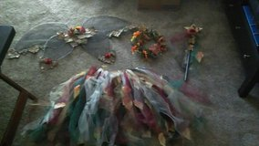 Hand Made Fairy Costume in Joliet, Illinois