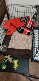 Bed and Cage plus Dog in Quantico, Virginia