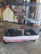 Cage with parakeet in Naperville, Illinois