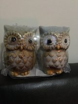 NIP Harvest Owl Salt and Pepper Shaker in Camp Lejeune, North Carolina